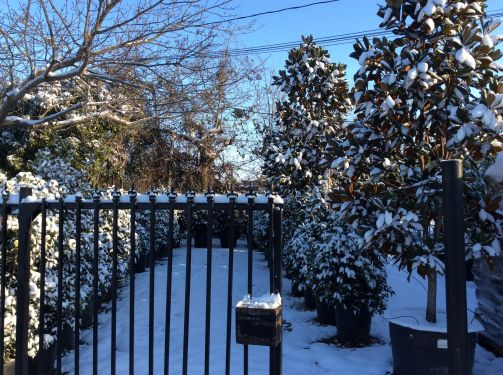 OFFICE OUTSIDE SNOW